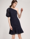 One-Shoulder Fitted Embroidered Dress